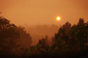 Et le soleil perça la pluie...